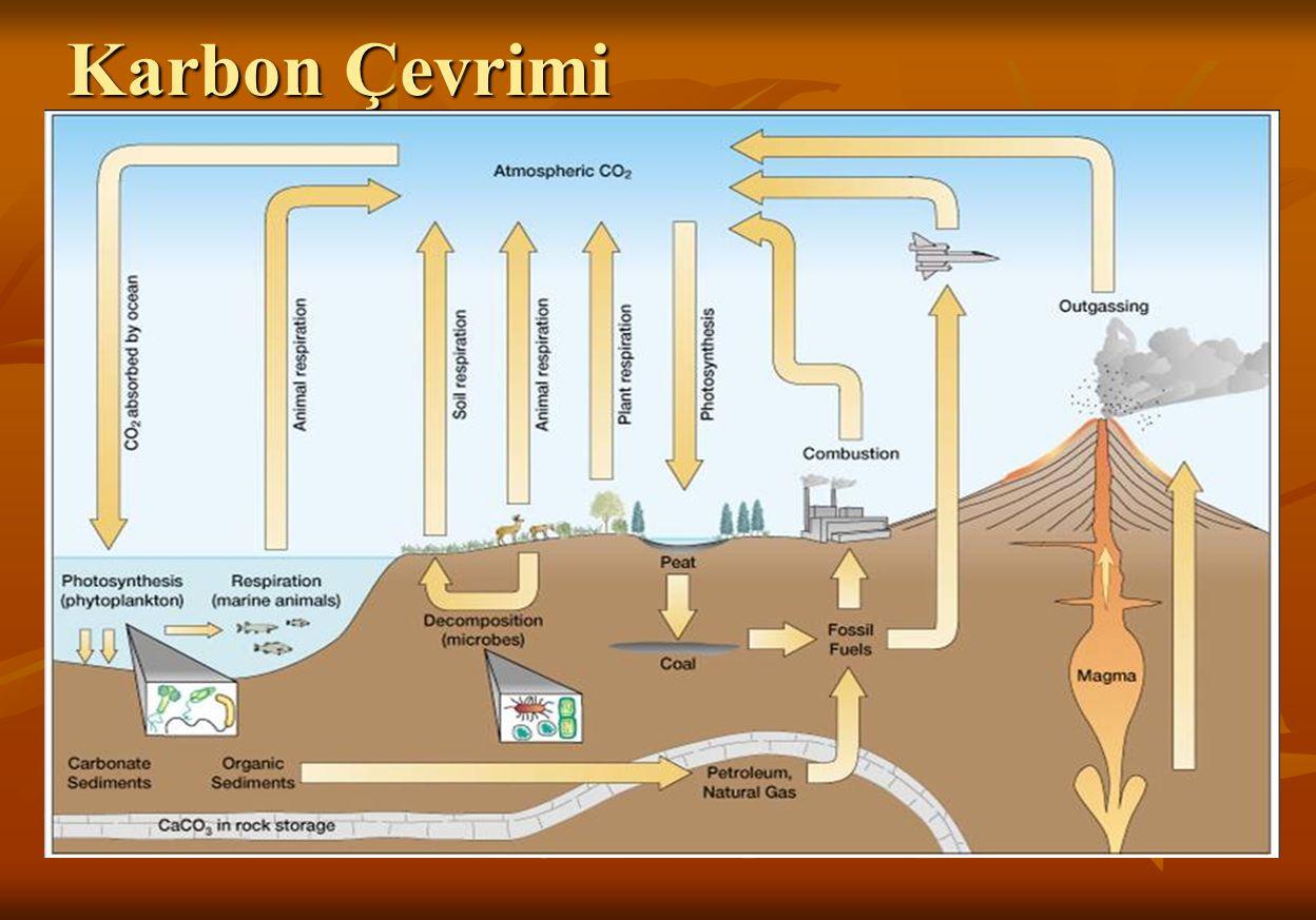 SERA ETKİSİ Sera etkisi genel olarak CO 2 in meydana getirdiği bir problemdir.