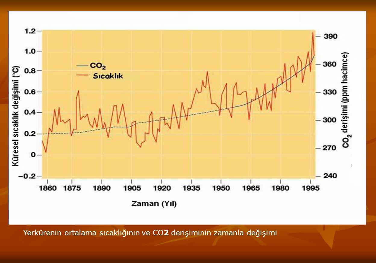 HAVA KİRLİLİĞİNİN KAYNAKLARI Doğal Kaynaklardan Oluşan Hava Kirliliği Doğal Kaynaklardan Oluşan Hava Kirliliği Deniz yosunlarının ortama verdiği gazlar, yanardağ veya orman yangınlarından atmosfere yayılan zararlı bileşikler, doğadaki biyolojik değişimler sırasında açığa çıkan CO ve CO 2, CH 4, vb.