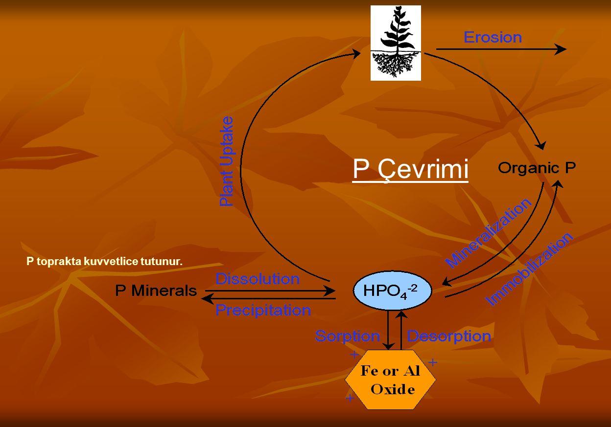 Şekil de görülen (Klark) oksijen elektrotunda, çözelti karıştırılır, oksijen geçiren membrandan difüzlenen oksijen, katotta suya indirgenirken, anotta Ag yükseltgenir.