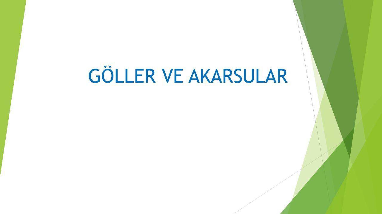 BESLENME REJİMLİ AKARSULAR  Yağmur Sularıyla Beslenen Akarsular: Türkiye de akarsuların önemli bir kısmı yağmur sularıyla beslenir.
