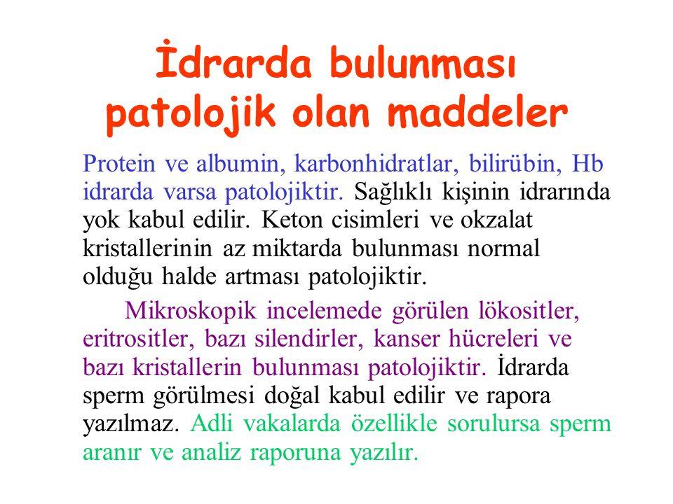 İdrarda bulunması patolojik olan maddeler Protein ve albumin, karbonhidratlar, bilirübin, Hb idrarda varsa patolojiktir. Sağlıklı kişinin idrarında yo