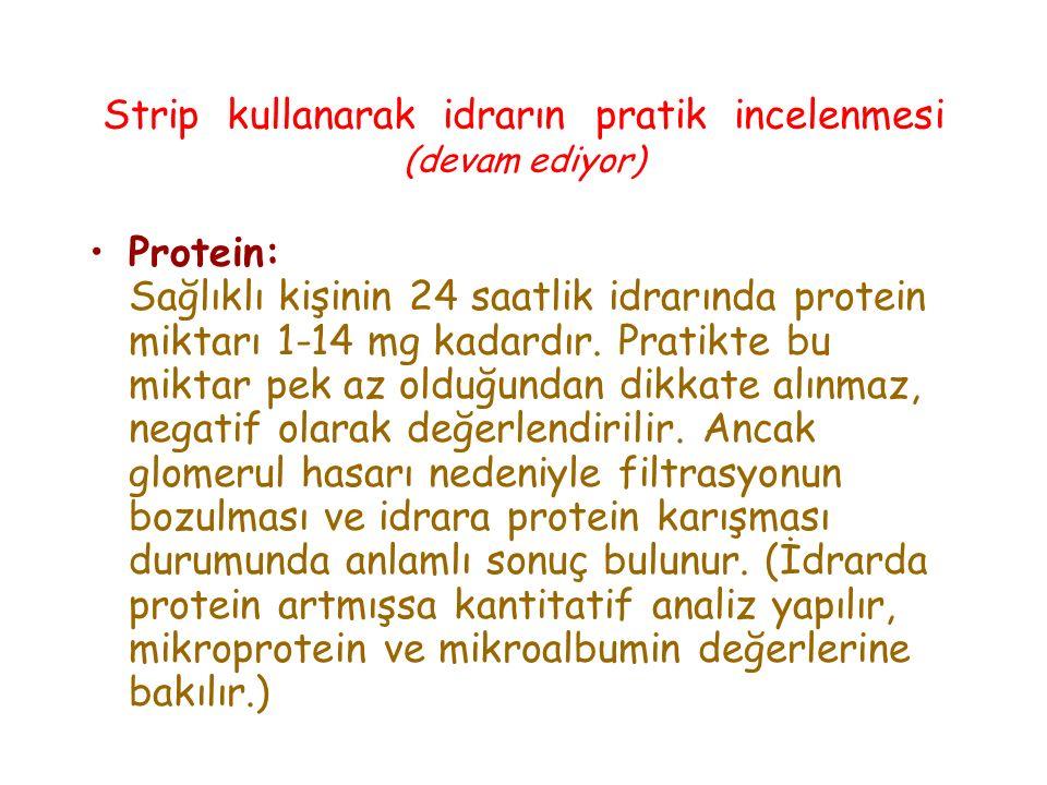 Strip kullanarak idrarın pratik incelenmesi (devam ediyor) Protein: Sağlıklı kişinin 24 saatlik idrarında protein miktarı 1-14 mg kadardır. Pratikte b