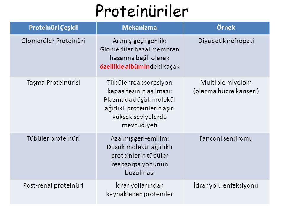 Proteinüriler Proteinüri ÇeşidiMekanizmaÖrnek Glomerüler ProteinüriArtmış geçirgenlik: Glomerüler bazal membran hasarına bağlı olarak özellikle albümindeki kaçak Diyabetik nefropati Taşma ProteinürisiTübüler reabsorpsiyon kapasitesinin aşılması: Plazmada düşük molekül ağırlıklı proteinlerin aşırı yüksek seviyelerde mevcudiyeti Multiple miyelom (plazma hücre kanseri) Tübüler proteinüriAzalmış geri-emilim: Düşük molekül ağırlıklı proteinlerin tübüler reabsorpsiyonunun bozulması Fanconi sendromu Post-renal proteinüriİdrar yollarından kaynaklanan proteinler İdrar yolu enfeksiyonu
