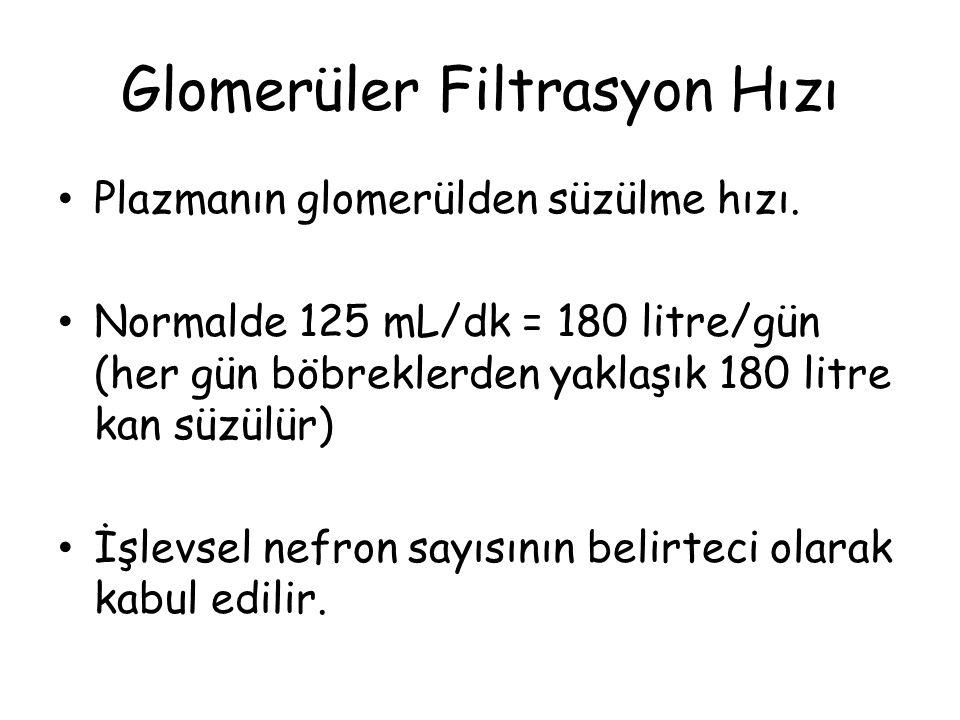 Glomerüler Filtrasyon Hızı Plazmanın glomerülden süzülme hızı. Normalde 125 mL/dk = 180 litre/gün (her gün böbreklerden yaklaşık 180 litre kan süzülür