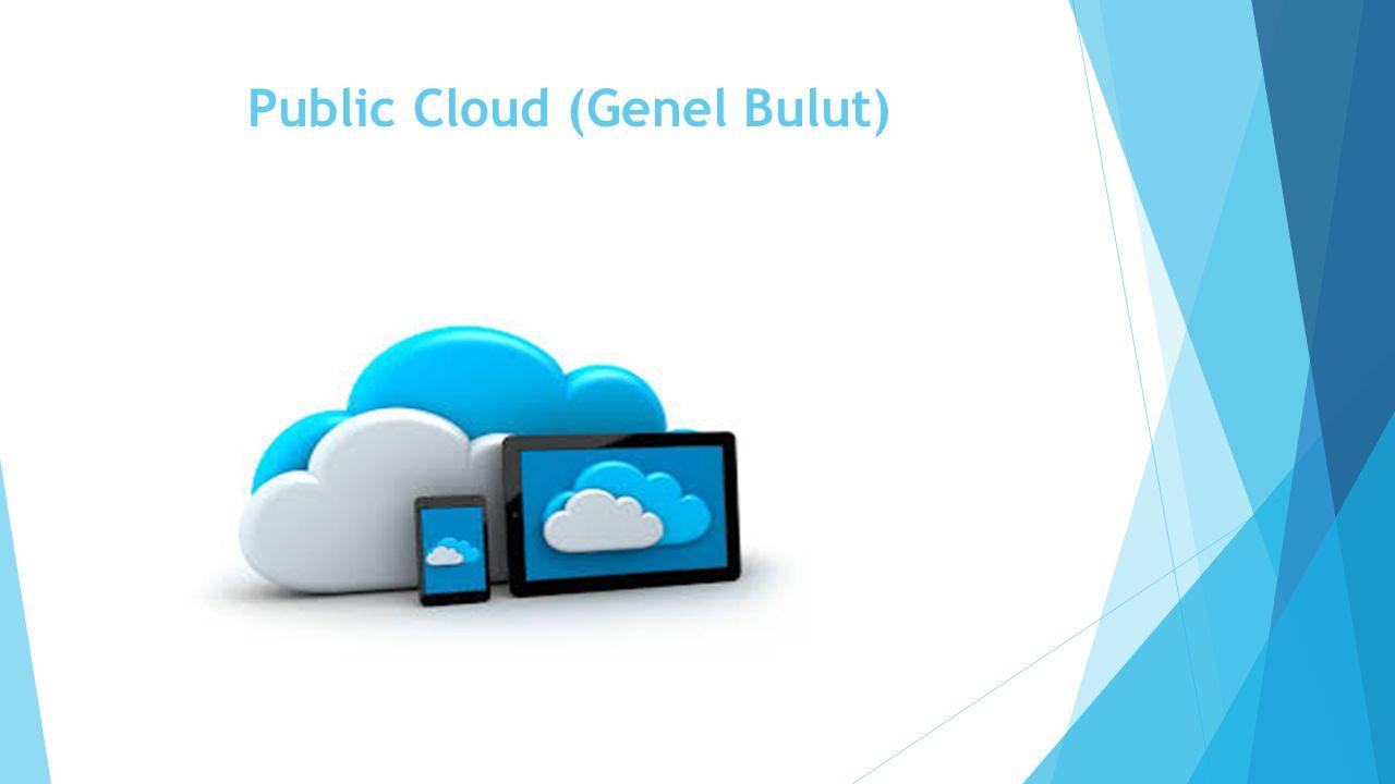 Public Cloud (Genel Bulut)