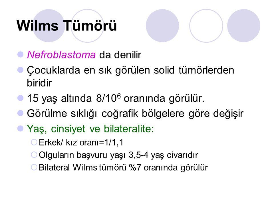 Wilms Tümörü Nefroblastoma da denilir Çocuklarda en sık görülen solid tümörlerden biridir 15 yaş altında 8/10 6 oranında görülür. Görülme sıklığı coğr