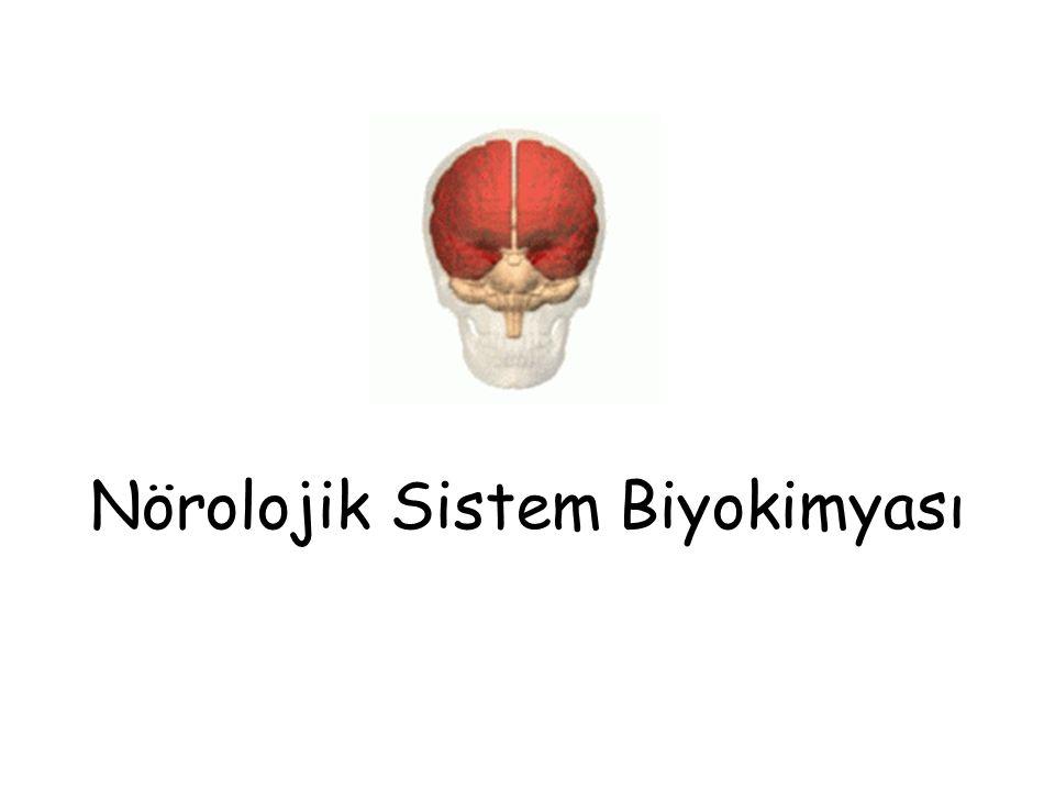 Nörolojik Sistem Biyokimyası