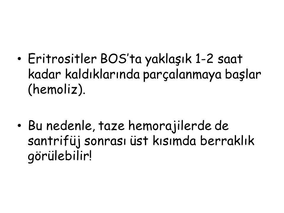 Eritrositler BOS'ta yaklaşık 1-2 saat kadar kaldıklarında parçalanmaya başlar (hemoliz).