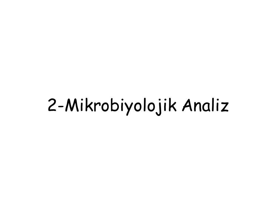 2-Mikrobiyolojik Analiz