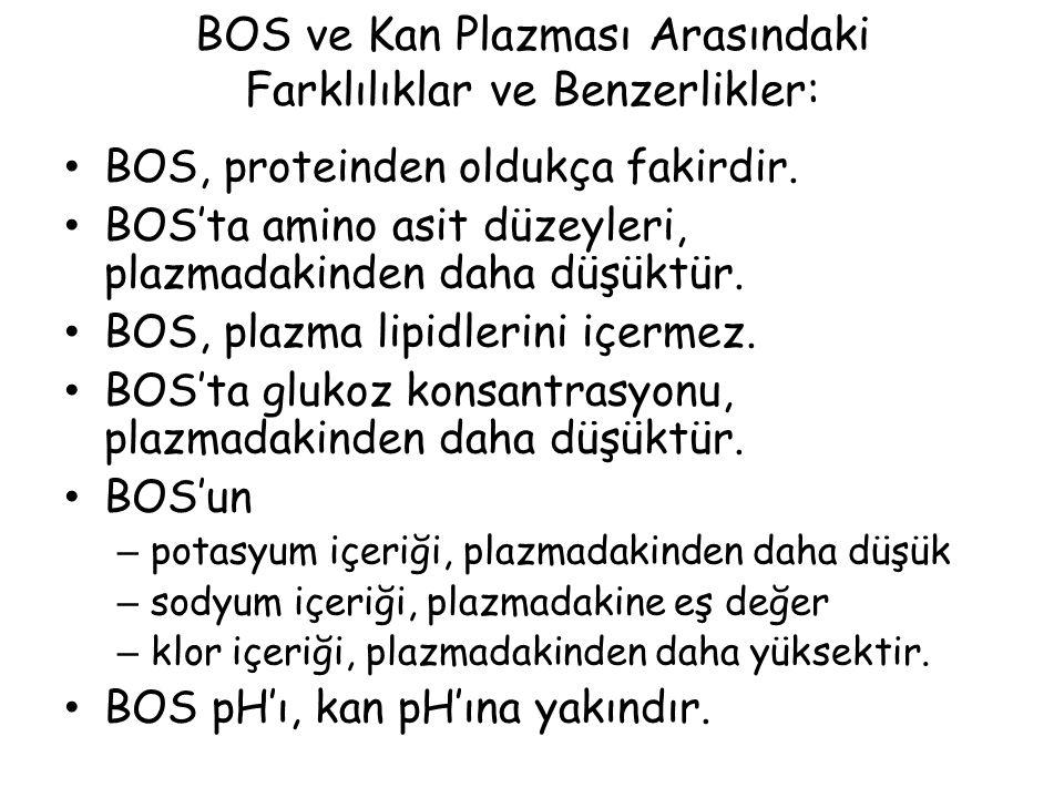 BOS ve Kan Plazması Arasındaki Farklılıklar ve Benzerlikler: BOS, proteinden oldukça fakirdir.