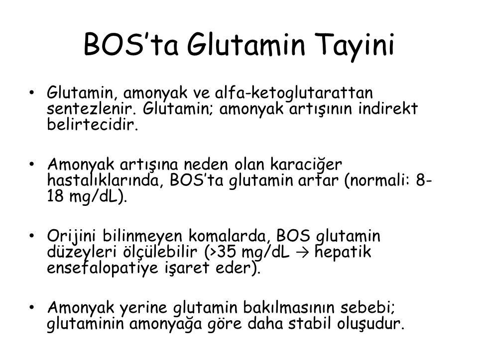 BOS'ta Glutamin Tayini Glutamin, amonyak ve alfa-ketoglutarattan sentezlenir.