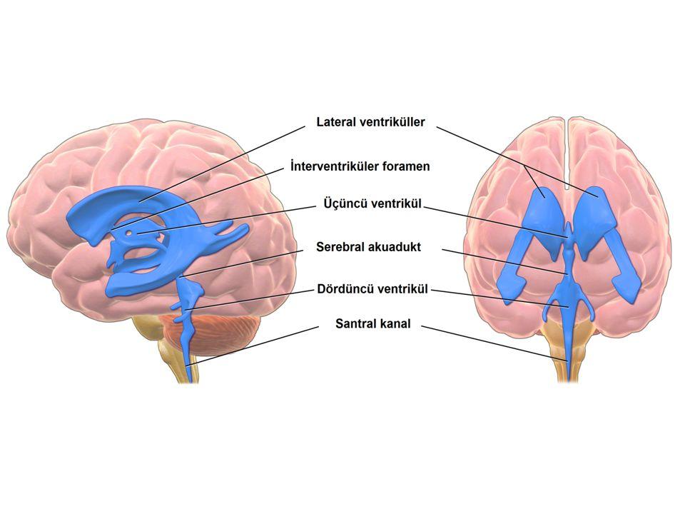 İndeksler BOS/serum albümin indeksi: Kan-beyin bariyerinin intakt olup olmadığını gösterir.