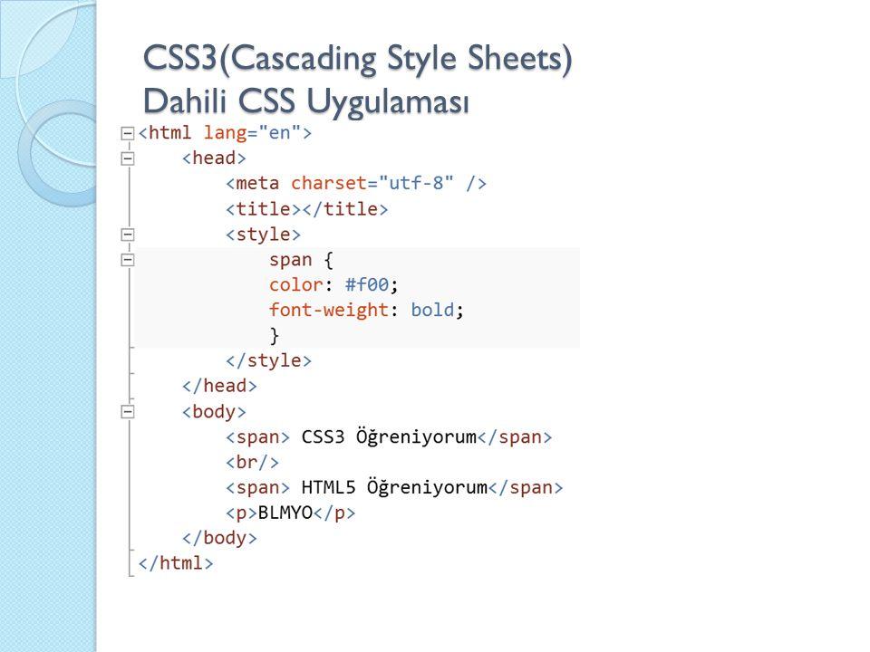 CSS3(Cascading Style Sheets) Dahili CSS Uygulaması