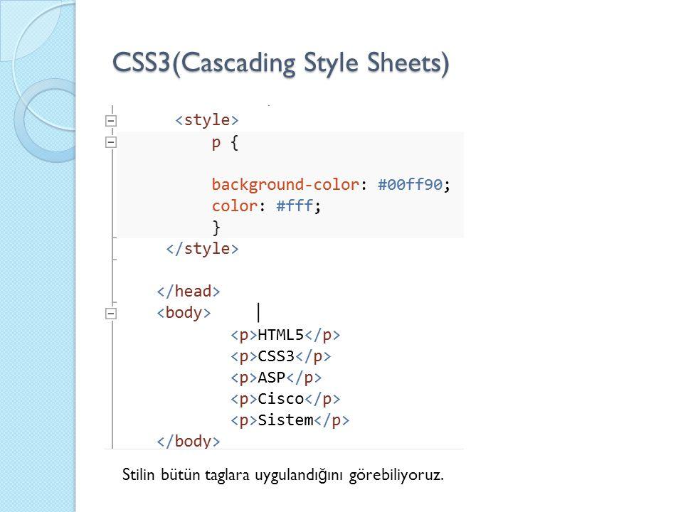 CSS3(Cascading Style Sheets) Stilin bütün taglara uygulandı ğ ını görebiliyoruz.