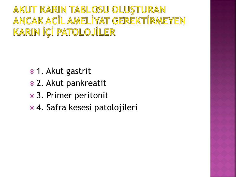  1. Akut gastrit  2. Akut pankreatit  3. Primer peritonit  4. Safra kesesi patolojileri