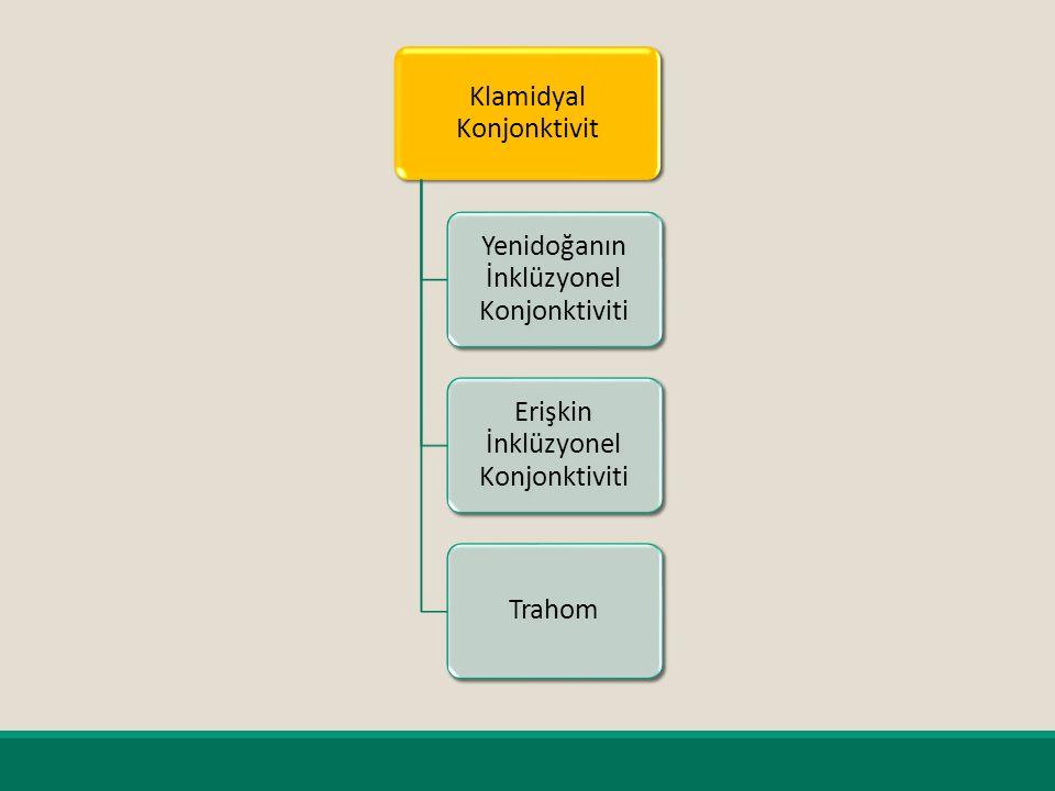 Klamidyal Konjonktivit Yenidoğanın İnklüzyonel Konjonktiviti Erişkin İnklüzyonel Konjonktiviti Trahom