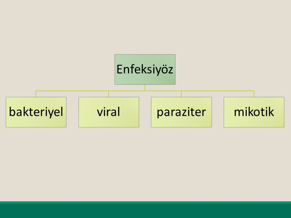 Enfeksiyöz bakteriyelviralparazitermikotik