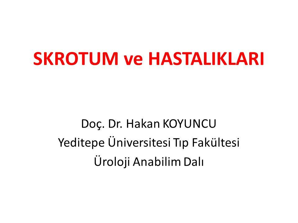 SKROTUM ve HASTALIKLARI Doç. Dr. Hakan KOYUNCU Yeditepe Üniversitesi Tıp Fakültesi Üroloji Anabilim Dalı