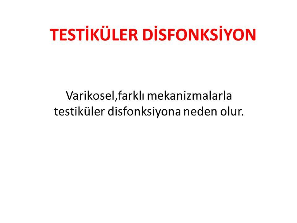 TESTİKÜLER DİSFONKSİYON Varikosel,farklı mekanizmalarla testiküler disfonksiyona neden olur.