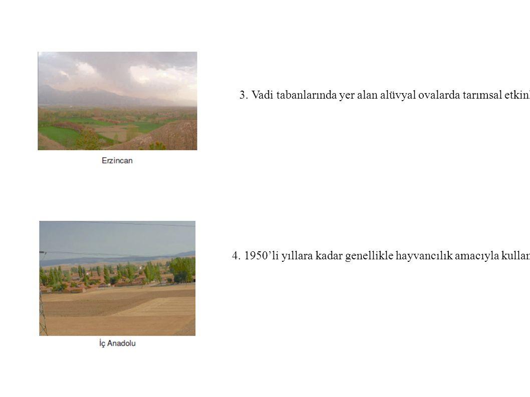 3. Vadi tabanlarında yer alan alüvyal ovalarda tarımsal etkinlikler yoğunlaşmış ve ova ile yamaçlar arasında yerleşim birimleri kurulmuştur. örnek: An