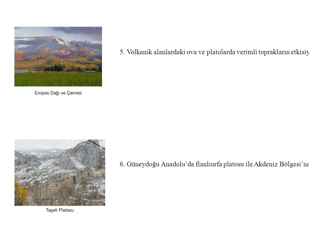 5. Volkanik alanlardaki ova ve platolarda verimli toprakların etkisiyle tarım ve yerleşme gelişmiştir. Örnek: Kayseri,Iğdır çevresi. 6. Güneydoğu Anad