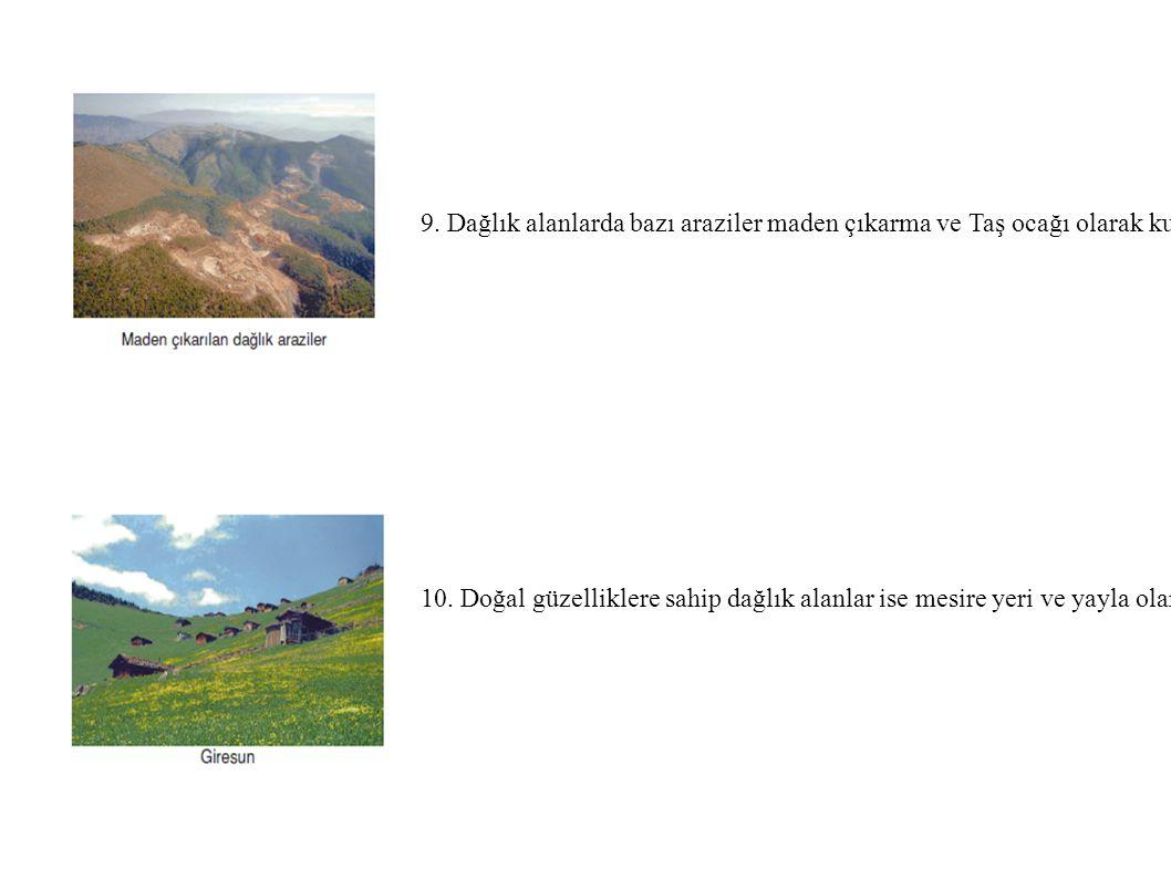 9. Dağlık alanlarda bazı araziler maden çıkarma ve Taş ocağı olarak kullanılmaktadır. 10. Doğal güzelliklere sahip dağlık alanlar ise mesire yeri ve y