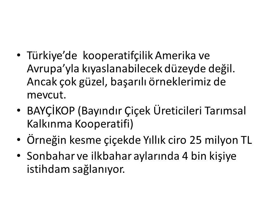 Türkiye'de kooperatifçilik Amerika ve Avrupa'yla kıyaslanabilecek düzeyde değil. Ancak çok güzel, başarılı örneklerimiz de mevcut. BAYÇİKOP (Bayındır