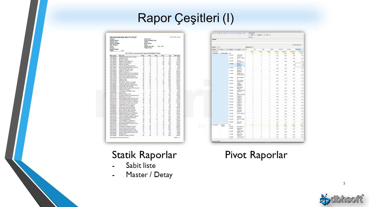 Rapor Çeşitleri (I) 5 Statik Raporlar -Sabit liste -Master / Detay Pivot Raporlar