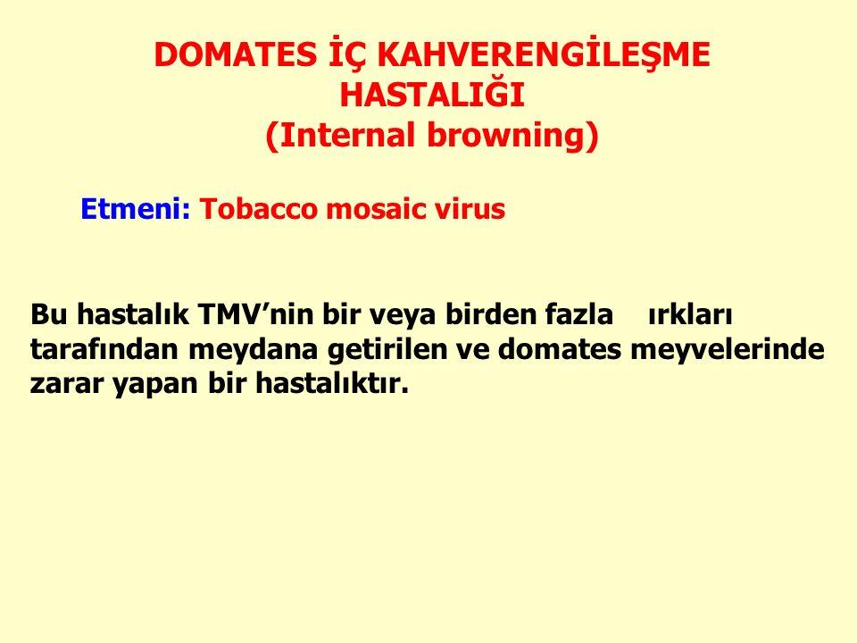 Bu hastalık TMV'nin bir veya birden fazla ırkları tarafından meydana getirilen ve domates meyvelerinde zarar yapan bir hastalıktır.