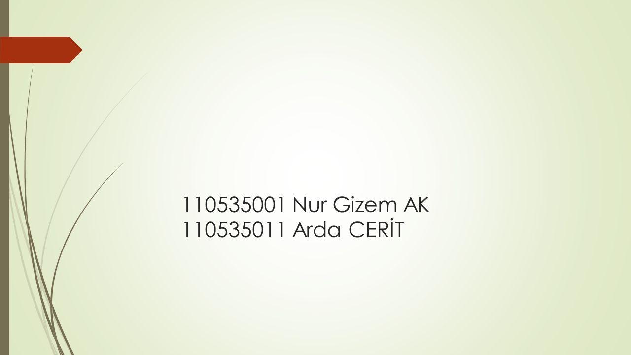 110535001 Nur Gizem AK 110535011 Arda CERİT