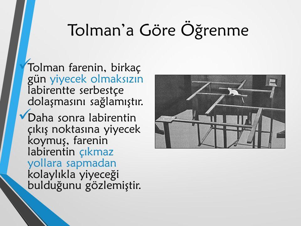 Tolman'a Göre Öğrenme Tolman farenin, birkaç gün yiyecek olmaksızın labirentte serbestçe dolaşmasını sağlamıştır.
