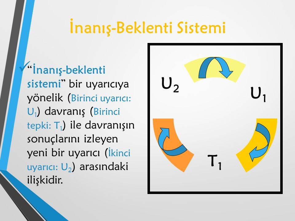 İnanış-Beklenti Sistemi İnanış-beklenti sistemi bir uyarıcıya yönelik ( Birinci uyarıcı: U 1 ) davranış ( Birinci tepki: T 1 ) ile davranışın sonuçlarını izleyen yeni bir uyarıcı ( İkinci uyarıcı: U 2 ) arasındaki ilişkidir.