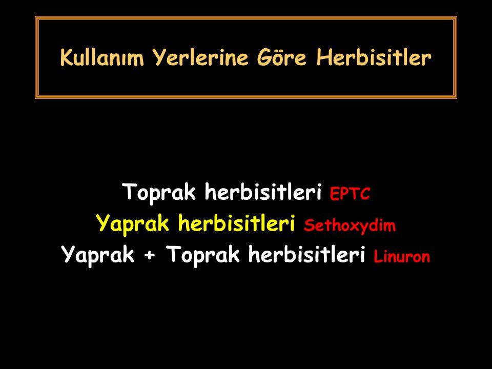 Kullanım Yerlerine Göre Herbisitler Toprak herbisitleri EPTC Yaprak herbisitleri Sethoxydim Yaprak + Toprak herbisitleri Linuron