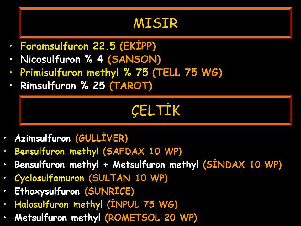 MISIR Foramsulfuron 22.5 (EKİPP) Nicosulfuron % 4 (SANSON) Primisulfuron methyl % 75 (TELL 75 WG) Rimsulfuron % 25 (TAROT) Azimsulfuron (GULLİVER) Bensulfuron methyl (SAFDAX 10 WP) Bensulfuron methyl + Metsulfuron methyl (SİNDAX 10 WP) Cyclosulfamuron (SULTAN 10 WP) Ethoxysulfuron (SUNRİCE) Halosulfuron methyl (İNPUL 75 WG) Metsulfuron methyl (ROMETSOL 20 WP) ÇELTİK
