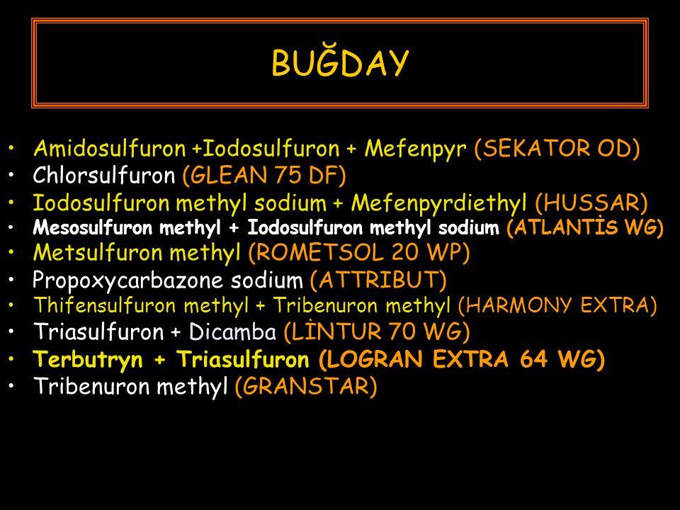 BUĞDAY Amidosulfuron +Iodosulfuron + Mefenpyr (SEKATOR OD) Chlorsulfuron (GLEAN 75 DF) Iodosulfuron methyl sodium + Mefenpyrdiethyl (HUSSAR) Mesosulfuron methyl + Iodosulfuron methyl sodium (ATLANTİS WG) Metsulfuron methyl (ROMETSOL 20 WP) Propoxycarbazone sodium (ATTRIBUT) Thifensulfuron methyl + Tribenuron methyl (HARMONY EXTRA) Triasulfuron + Dicamba (LİNTUR 70 WG) Terbutryn + Triasulfuron (LOGRAN EXTRA 64 WG) Tribenuron methyl (GRANSTAR)
