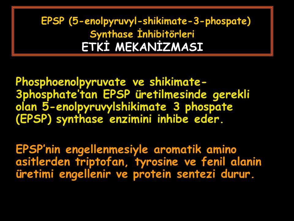 EPSP (5-enolpyruvyl-shikimate-3-phospate) Synthase İnhibitörleri ETKİ MEKANİZMASI Phosphoenolpyruvate ve shikimate- 3phosphate'tan EPSP üretilmesinde gerekli olan 5-enolpyruvylshikimate 3 phospate (EPSP) synthase enzimini inhibe eder.