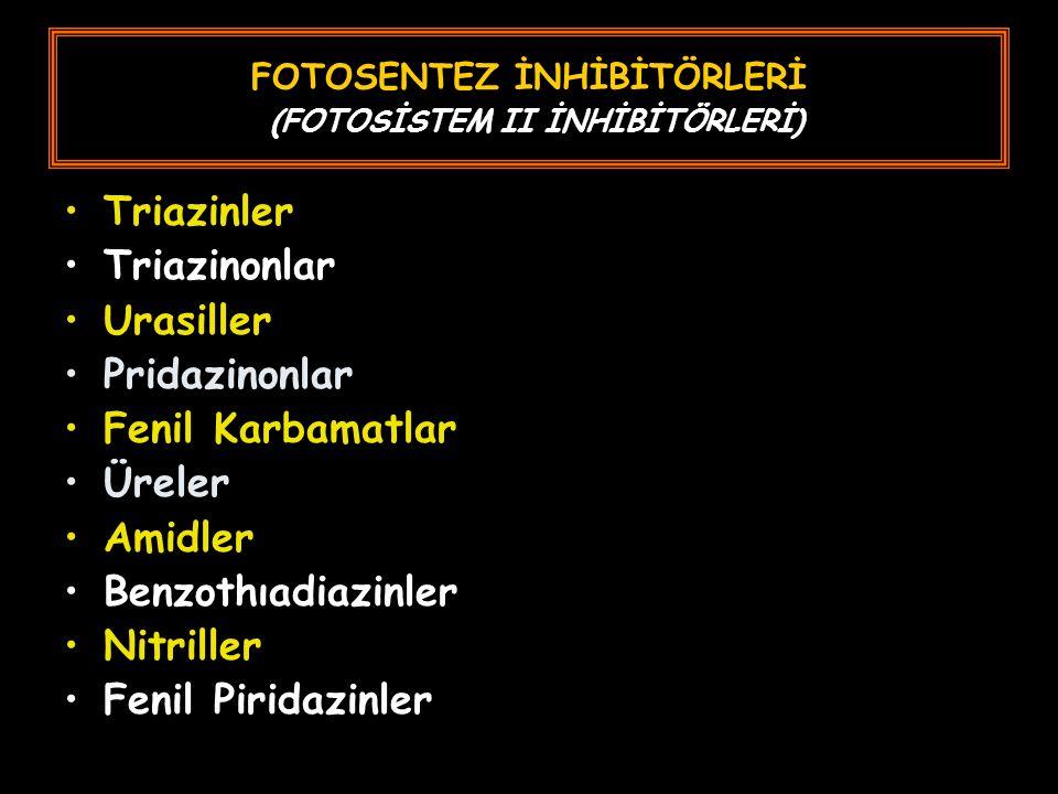FOTOSENTEZ İNHİBİTÖRLERİ (FOTOSİSTEM II İNHİBİTÖRLERİ) Triazinler Triazinonlar Urasiller Pridazinonlar Fenil Karbamatlar Üreler Amidler Benzothıadiazinler Nitriller Fenil Piridazinler