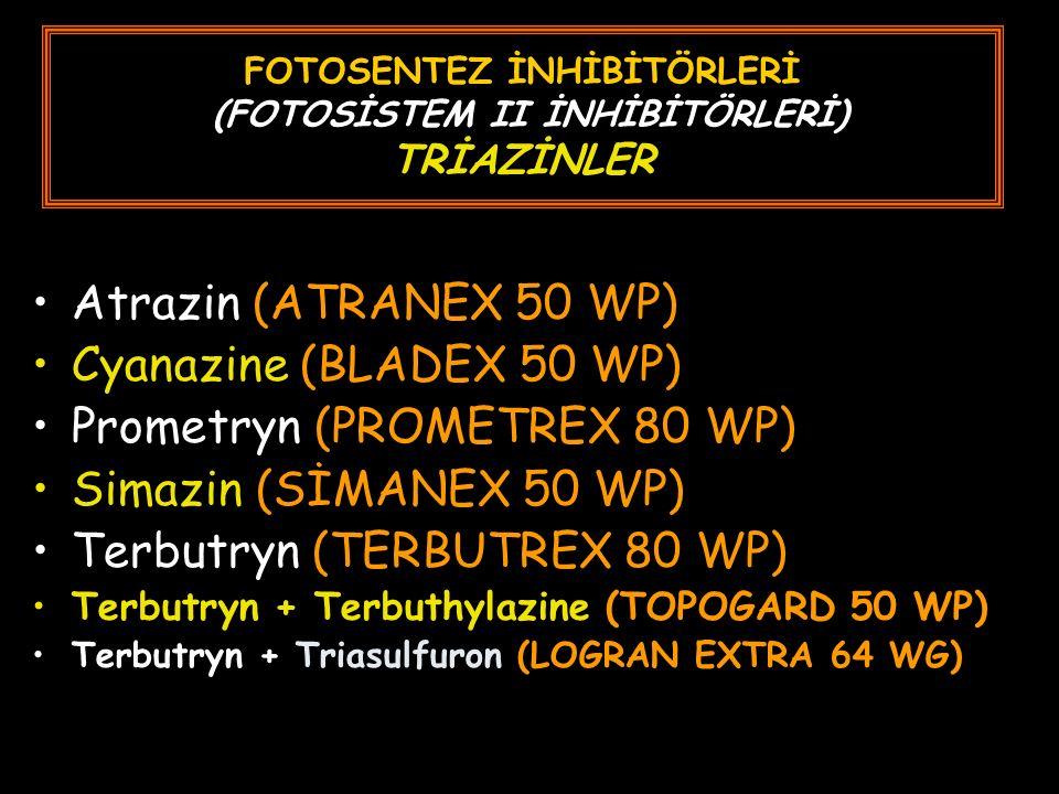 FOTOSENTEZ İNHİBİTÖRLERİ (FOTOSİSTEM II İNHİBİTÖRLERİ) TRİAZİNLER Atrazin (ATRANEX 50 WP) Cyanazine (BLADEX 50 WP) Prometryn (PROMETREX 80 WP) Simazin (SİMANEX 50 WP) Terbutryn (TERBUTREX 80 WP) Terbutryn + Terbuthylazine (TOPOGARD 50 WP) Terbutryn + Triasulfuron (LOGRAN EXTRA 64 WG)