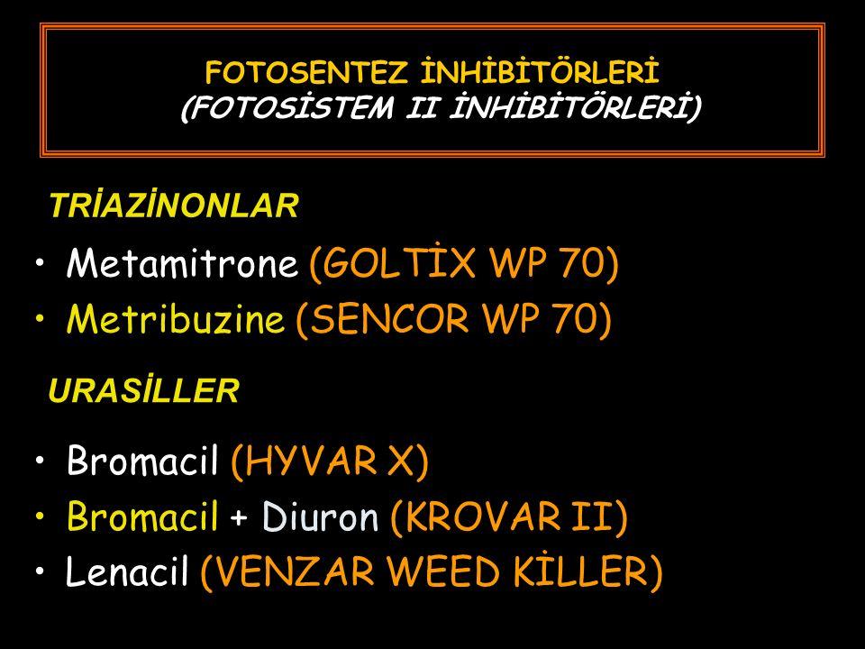 FOTOSENTEZ İNHİBİTÖRLERİ (FOTOSİSTEM II İNHİBİTÖRLERİ) Metamitrone (GOLTİX WP 70) Metribuzine (SENCOR WP 70) Bromacil (HYVAR X) Bromacil + Diuron (KROVAR II) Lenacil (VENZAR WEED KİLLER) URASİLLER TRİAZİNONLAR