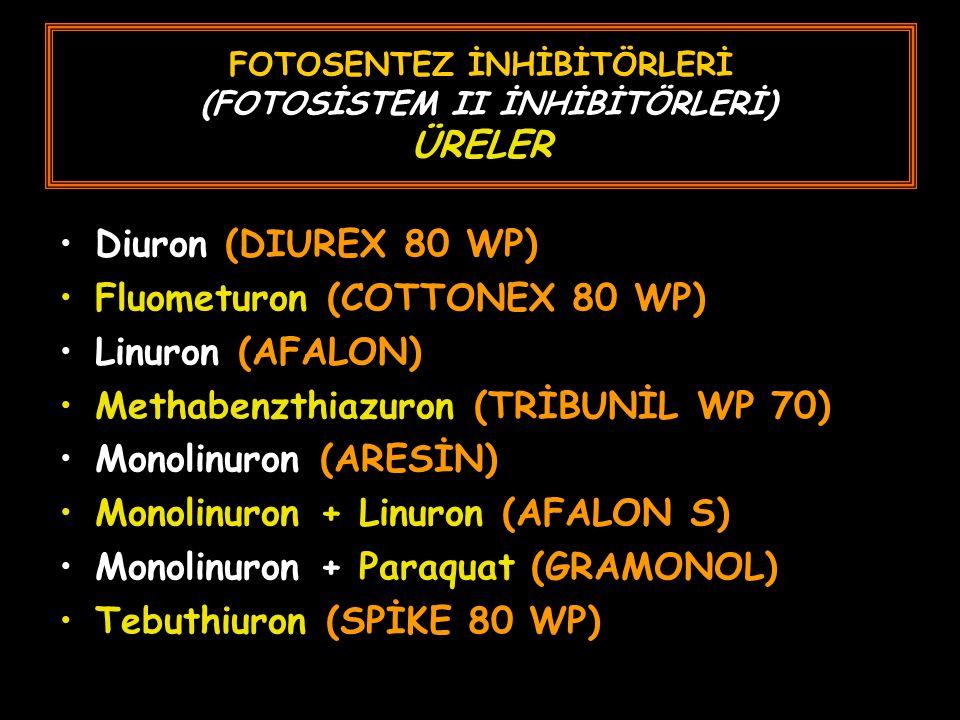FOTOSENTEZ İNHİBİTÖRLERİ (FOTOSİSTEM II İNHİBİTÖRLERİ) ÜRELER Diuron (DIUREX 80 WP) Fluometuron (COTTONEX 80 WP) Linuron (AFALON) Methabenzthiazuron (TRİBUNİL WP 70) Monolinuron (ARESİN) Monolinuron + Linuron (AFALON S) Monolinuron + Paraquat (GRAMONOL) Tebuthiuron (SPİKE 80 WP)