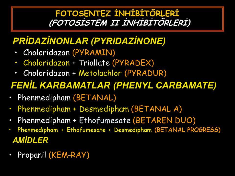 FOTOSENTEZ İNHİBİTÖRLERİ (FOTOSİSTEM II İNHİBİTÖRLERİ) Choloridazon (PYRAMIN) Choloridazon + Triallate (PYRADEX) Choloridazon + Metolachlor (PYRADUR) PRİDAZİNONLAR (PYRIDAZİNONE) FENİL KARBAMATLAR (PHENYL CARBAMATE) Phenmedipham (BETANAL) Phenmedipham + Desmedipham (BETANAL A) Phenmedipham + Ethofumesate (BETAREN DUO) Phenmedipham + Ethofumesate + Desmedipham (BETANAL PROGRESS) AMİDLER Propanil (KEM-RAY)