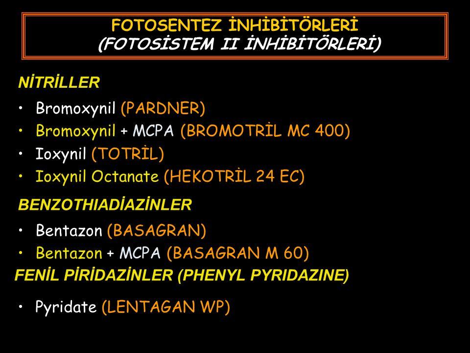 FOTOSENTEZ İNHİBİTÖRLERİ (FOTOSİSTEM II İNHİBİTÖRLERİ) Bromoxynil (PARDNER) Bromoxynil + MCPA (BROMOTRİL MC 400) Ioxynil (TOTRİL) Ioxynil Octanate (HEKOTRİL 24 EC) NİTRİLLER BENZOTHIADİAZİNLER Bentazon (BASAGRAN) Bentazon + MCPA (BASAGRAN M 60) FENİL PİRİDAZİNLER (PHENYL PYRIDAZINE) Pyridate (LENTAGAN WP)