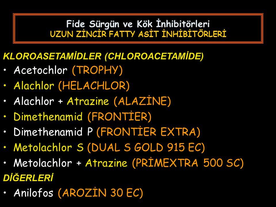 Fide Sürgün ve Kök İnhibitörleri UZUN ZİNCİR FATTY ASİT İNHİBİTÖRLERİ Acetochlor (TROPHY) Alachlor (HELACHLOR) Alachlor + Atrazine (ALAZİNE) Dimethenamid (FRONTİER) Dimethenamid P (FRONTİER EXTRA) Metolachlor S (DUAL S GOLD 915 EC) Metolachlor + Atrazine (PRİMEXTRA 500 SC) KLOROASETAMİDLER (CHLOROACETAMİDE) DİĞERLERİ Anilofos (AROZİN 30 EC)