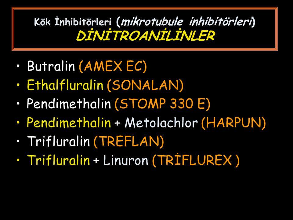 Kök İnhibitörleri (mikrotubule inhibitörleri) DİNİTROANİLİNLER Butralin (AMEX EC) Ethalfluralin (SONALAN) Pendimethalin (STOMP 330 E) Pendimethalin + Metolachlor (HARPUN) Trifluralin (TREFLAN) Trifluralin + Linuron (TRİFLUREX )