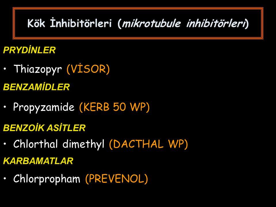Thiazopyr (VİSOR) PRYDİNLER Kök İnhibitörleri (mikrotubule inhibitörleri) BENZAMİDLER Propyzamide (KERB 50 WP) BENZOİK ASİTLER Chlorthal dimethyl (DACTHAL WP) KARBAMATLAR Chlorpropham (PREVENOL)
