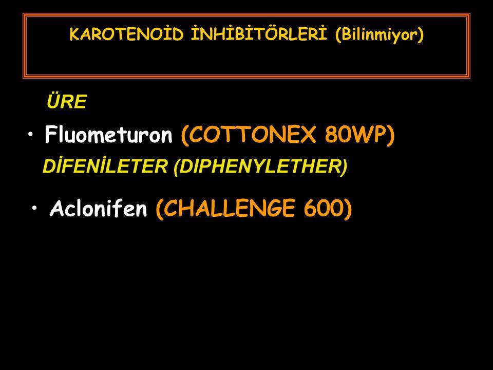 KAROTENOİD İNHİBİTÖRLERİ (Bilinmiyor) Fluometuron (COTTONEX 80WP) ÜRE DİFENİLETER (DIPHENYLETHER) Aclonifen (CHALLENGE 600)