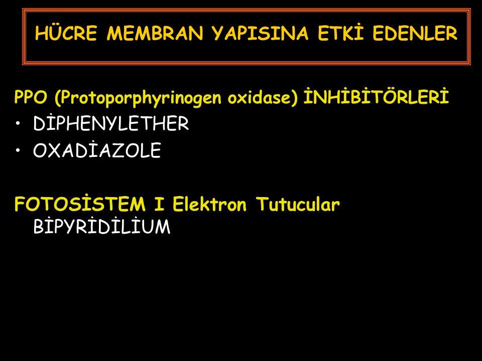 HÜCRE MEMBRAN YAPISINA ETKİ EDENLER PPO (Protoporphyrinogen oxidase) İNHİBİTÖRLERİ DİPHENYLETHER OXADİAZOLE FOTOSİSTEM I Elektron Tutucular BİPYRİDİLİUM