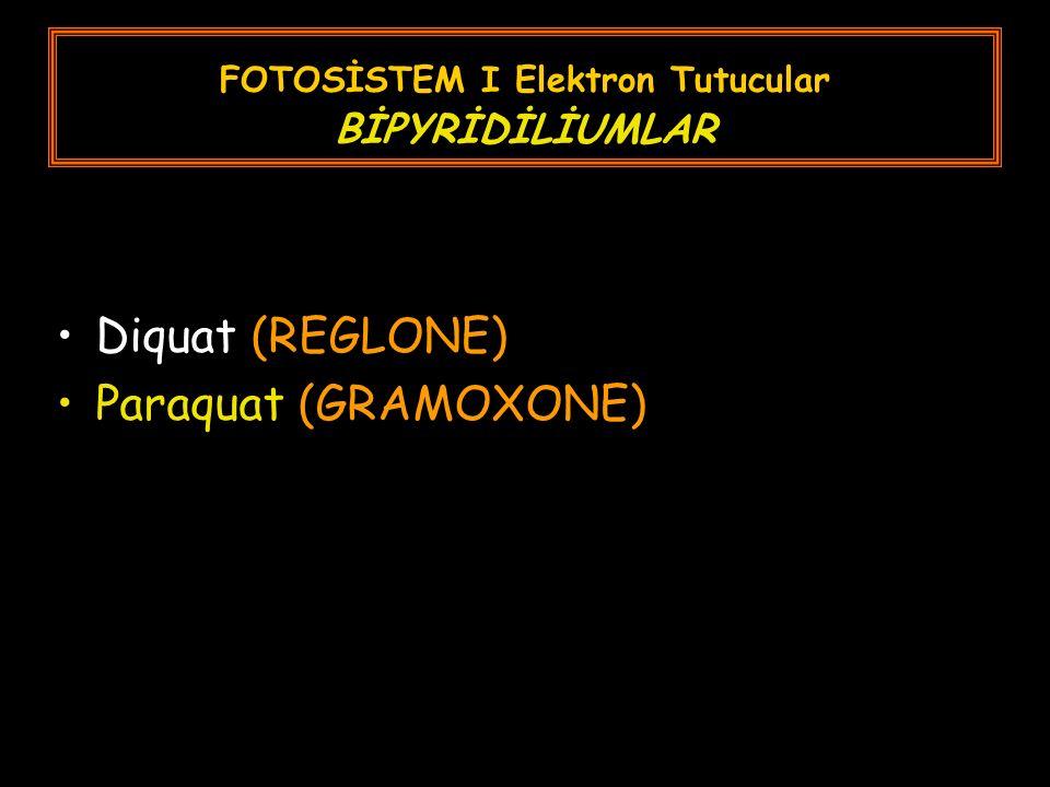 FOTOSİSTEM I Elektron Tutucular BİPYRİDİLİUMLAR Diquat (REGLONE) Paraquat (GRAMOXONE)