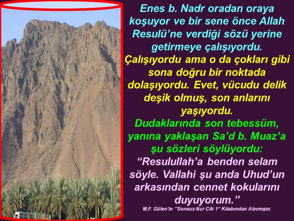4 Enes b. Nadr oradan oraya koşuyor ve bir sene önce Allah Resulü'ne verdiği sözü yerine getirmeye çalışıyordu. Çalışıyordu ama o da çokları gibi sona