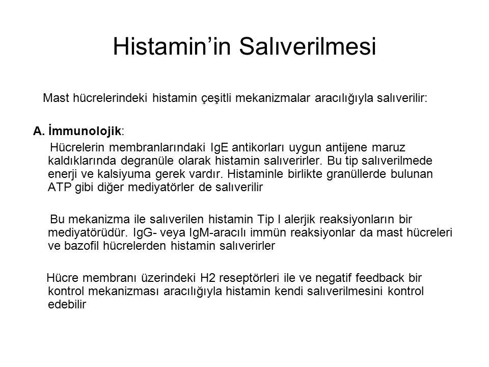 Histamin'in Salıverilmesi Mast hücrelerindeki histamin çeşitli mekanizmalar aracılığıyla salıverilir: A. İmmunolojik: Hücrelerin membranlarındaki IgE